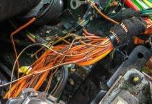 Photo of Panne automobile: Quand les rongeurs s'attaquent à vos câbles !